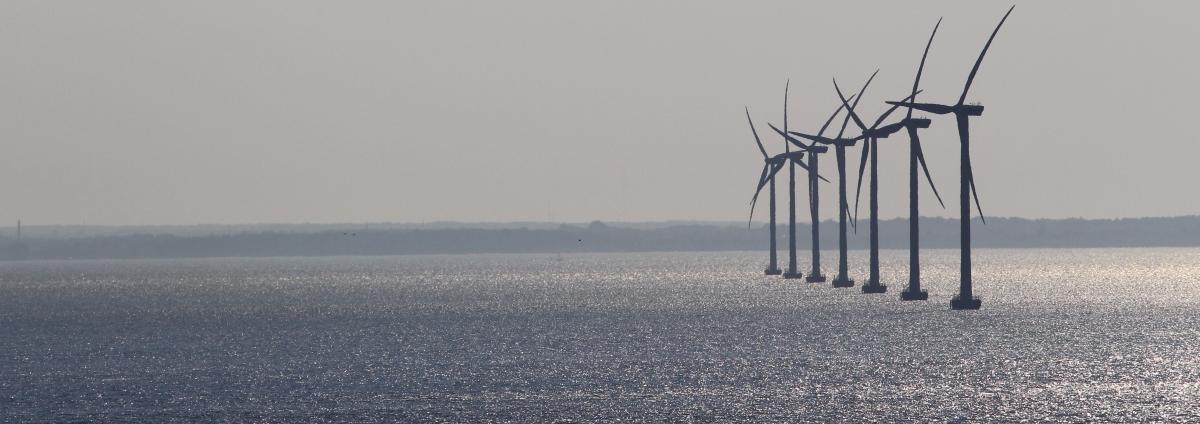 Wo wird wie viel erneuerbare Energie genutzt?